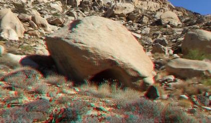 the-oyster-bar-joshua-tree-np-3da-1080p-dscf5040