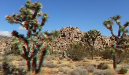 Small World Joshua Tree 3DA 1080p DSCF1408