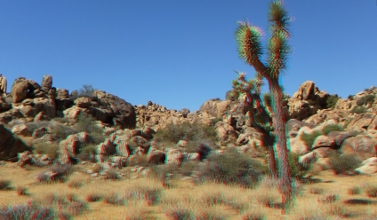 Small World Joshua Tree 3DA 1080p DSCF1413