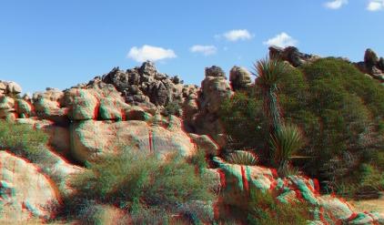 Small World Joshua Tree 3DA 1080p DSCF1414