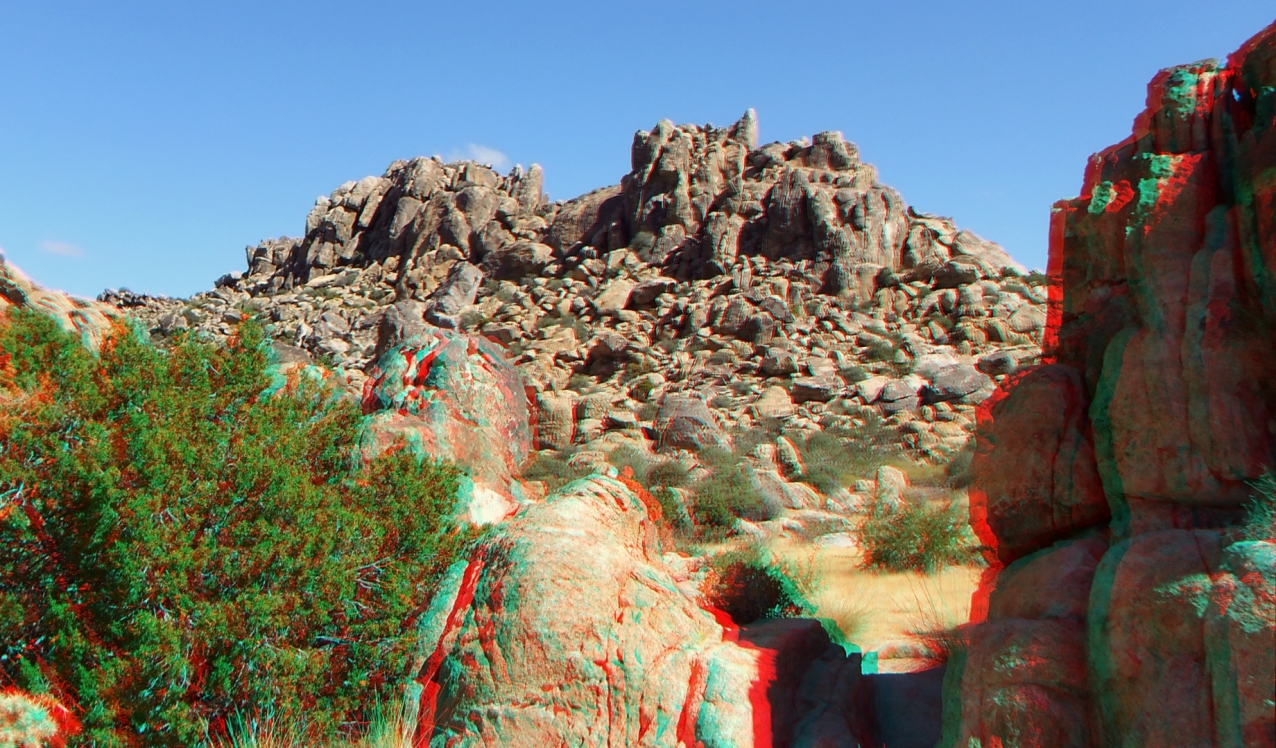 Small World Joshua Tree 3DA 1080p DSCF1415