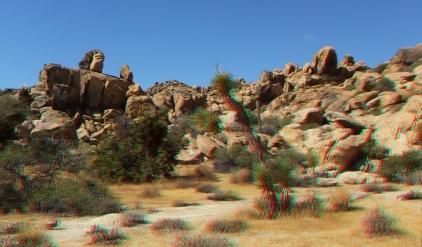 Small World Joshua Tree 3DA 1080p DSCF1418