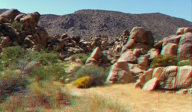 Small World Joshua Tree 3DA 1080p DSCF1421