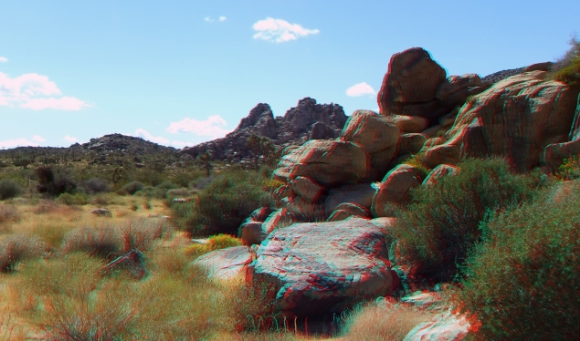 Small World Joshua Tree 3DA 1080p DSCF1423