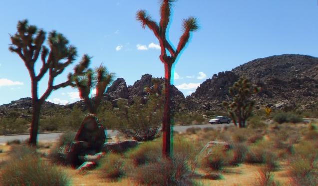 Small World Joshua Tree 3DA 1080p DSCF1427
