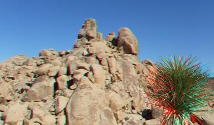 The Diamond Clump Joshua Tree 3DA 1080p DSCF0950