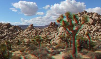 The Diamond Clump Joshua Tree 3DA 1080p DSCF1934