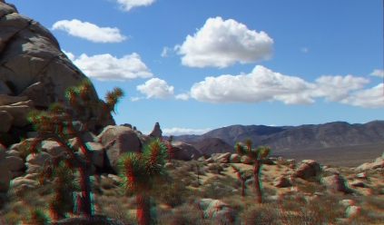 Virgin Islands Joshua Tree 3DA 1080p DSCF1481