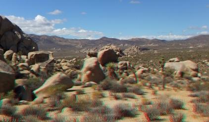 Virgin Islands Joshua Tree 3DA 1080p DSCF1509