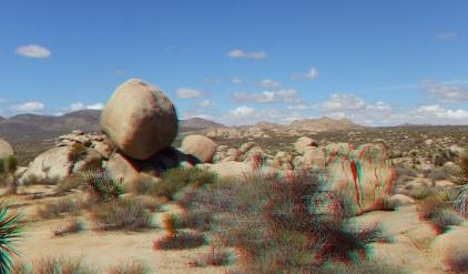 Virgin Islands Joshua Tree 3DA 1080p DSCF1519