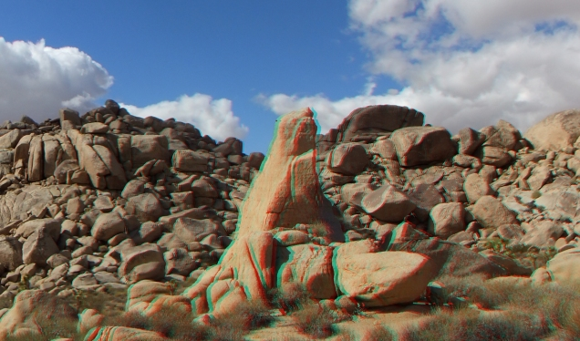 Virgin Islands Joshua Tree 3DA 1080p DSCF1951