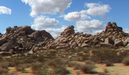 Virgin Islands Joshua Tree 3DA 1080p DSCF1985