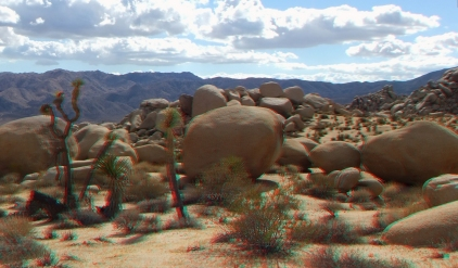 Virgin Islands Joshua Tree 3DA 1080p DSCF2038