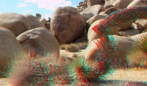Virgin Islands Joshua Tree 3DA 1080p DSCF2047