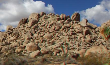 Virgin Islands Joshua Tree 3DA 1080p DSCF2070