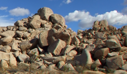 Virgin Islands Joshua Tree 3DA 1080p DSCF2133