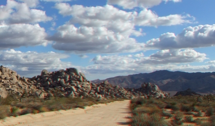Virgin Islands Joshua Tree 3DA 1080p DSCF2144