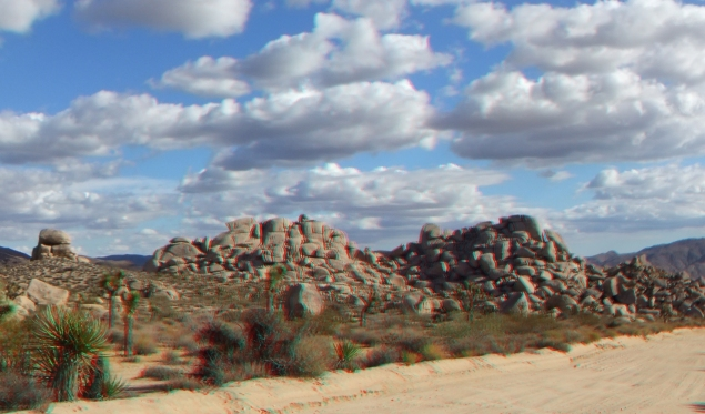Virgin Islands Joshua Tree 3DA 1080p DSCF2145