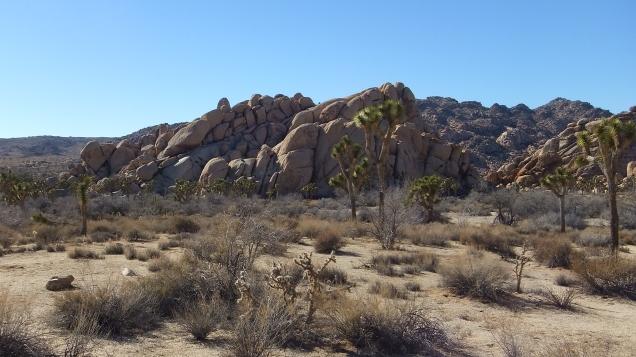 Arid Piles