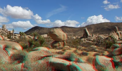 East Virgin Islands Joshua Tree 3DA 1080p DSCF1756