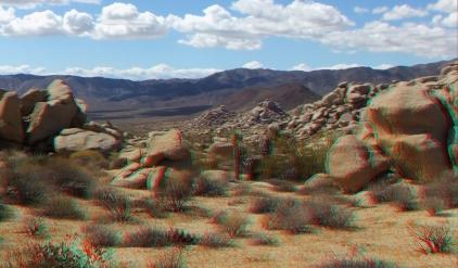 Lechlinski Joshua Tree 3DA 1080p DSCF1608