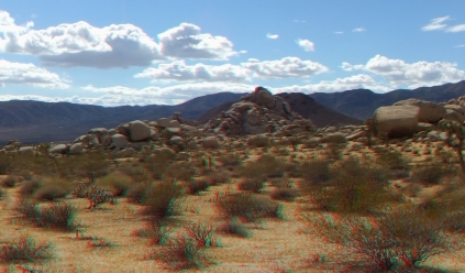 Lechlinski Joshua Tree 3DA 1080p DSCF2016