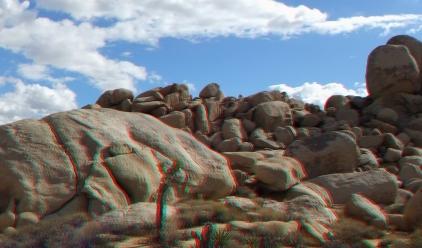 Lechlinski Joshua Tree 3DA 1080p DSCF2084