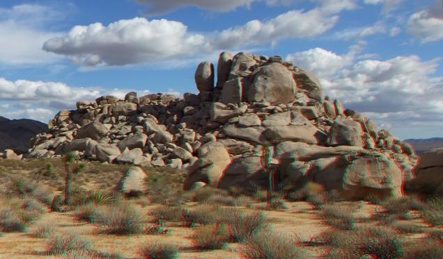 Lechlinski Joshua Tree 3DA 1080p DSCF2111