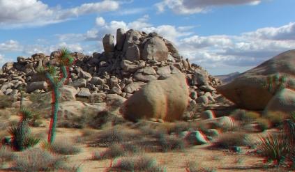 Lechlinski Joshua Tree 3DA 1080p DSCF2116