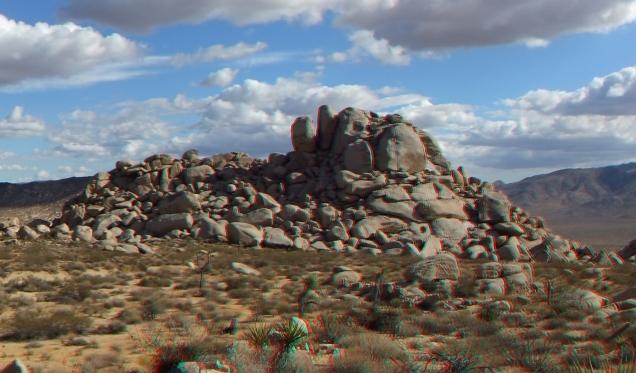Lechlinski Joshua Tree 3DA 1080p DSCF2123