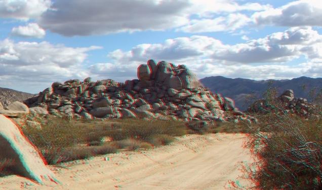 Lechlinski Joshua Tree 3DA 1080p DSCF2132