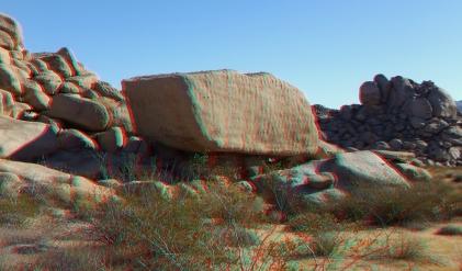 Lechlinski Joshua Tree 3DA 1080p DSCF8177
