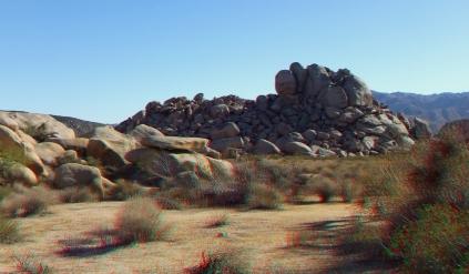 Lechlinski Joshua Tree 3DA 1080p DSCF8183