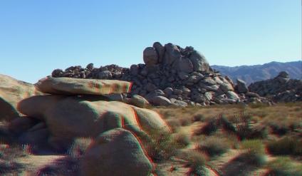 Lechlinski Joshua Tree 3DA 1080p DSCF8186
