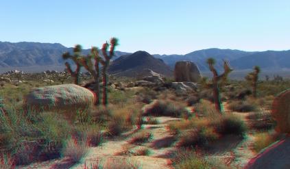 Malapai Hill Joshua Tree 3DA 1080p DSCF1154