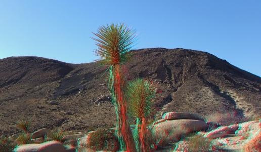 Malapai Hill Joshua Tree 3DA 1080p DSCF8259