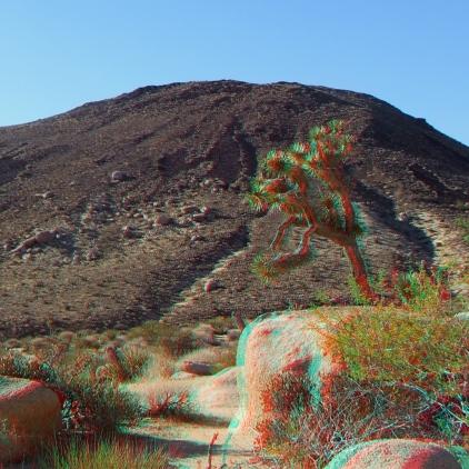 Malapai Hill Joshua Tree 3DA 1080p DSCF8267