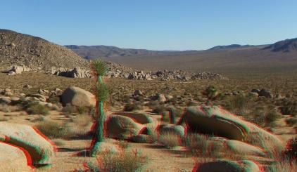 Pleasant Valley Joshua Tree 3DA 1080p DSCF8253