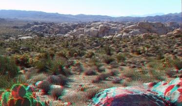 Wonderland Valley Far East 3DA 1080p DSCF2998