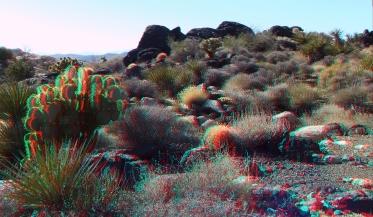 Wonderland Valley Far East 3DA 1080p DSCF3003