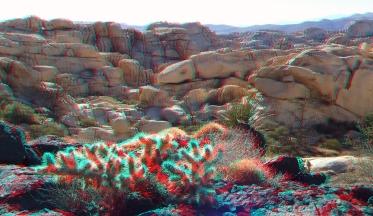Wonderland Valley Far East 3DA 1080p DSCF3023