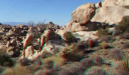 Wonderland Valley Far East 3DA 1080p DSCF3045