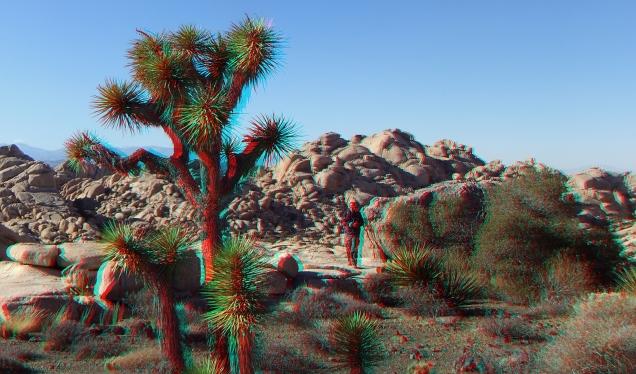 Wonderland Valley Far East 3DA 1080p DSCF3061