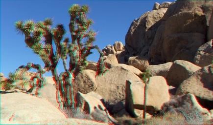 Arid Piles 3DA 1080p DSCF7437