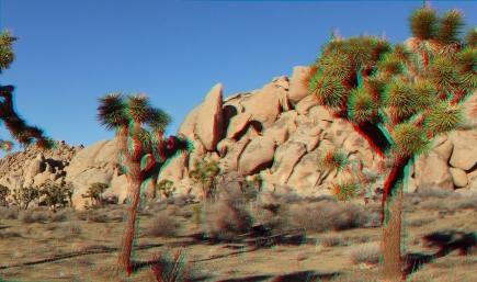 Arid Piles 3DA 1080p DSCF7568