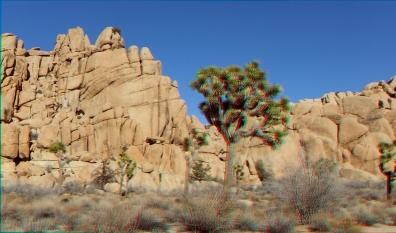 Blue Nubian Wall 3DA 1080p DSCF7390
