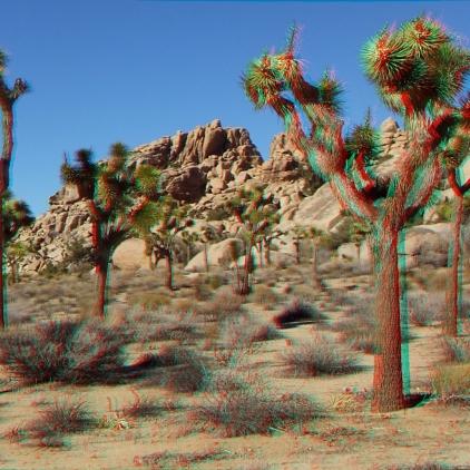 Cockroach Crags Joshua Tree 3DA 1080p DSCF7396