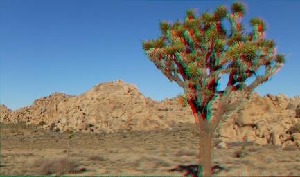 Jimmy Cliff 3DA 1080p DSCF7529