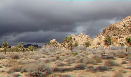 Jimmy Cliff 3DA 1080p DSCF7663