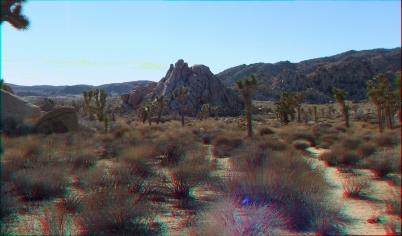 Mount Grossvogel Joshua Tree 3DA 1080p DSCF7411